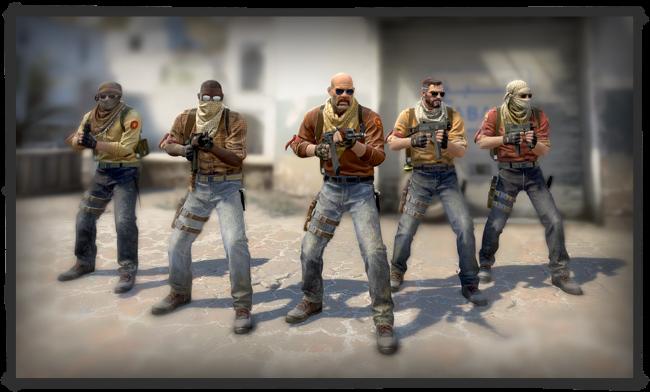 csgo terroriste modele skin