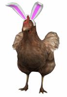 poulet festif csgo